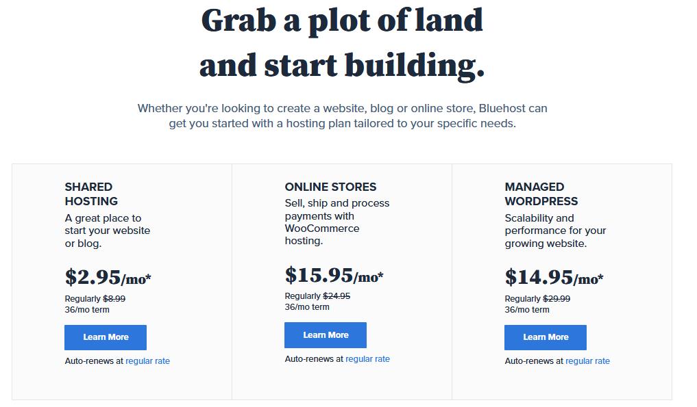 Blue-host-pricing
