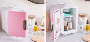 beauty fridge, Shopify best selling product for 2021