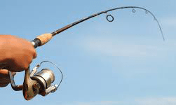 Fishing rod best product
